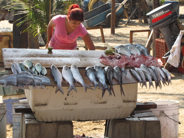 "After the Cliffs we went for a ""stroll about town"" in Acapulco... there's a local lady readying her ""catch"" from that day to sell to the Locals... now that's Fresh Fish!!"