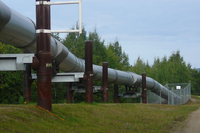 "During our Coach ride to the ""El Dorado"" Gold Mine we made a stop at the ""Alaska Pipeline"". Wow, what an engineering marvel!! Fairbanks is pretty close to the half way point of the 800 mile long ""Black Gold"" line."