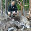 We can never remember which are Reindeer and which are Caribou but either way they have some huge Antlers. :-) Shawn getting a close up look.