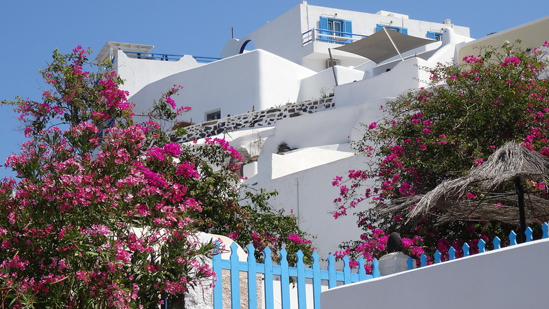 "As we strolled around Santorini's main town of ""Fira"" pretty scenes like this were all around."