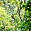 "There goes Shawn, ""Ziping"" through the Jungles of Roatan!!"
