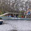 "After our Western Caribbean sailing we spent a day in Fort Lauderdale before heading home... and we figured, why not take and ""Air Boat"" ride in the Florida Everglades... fun!! :-)"