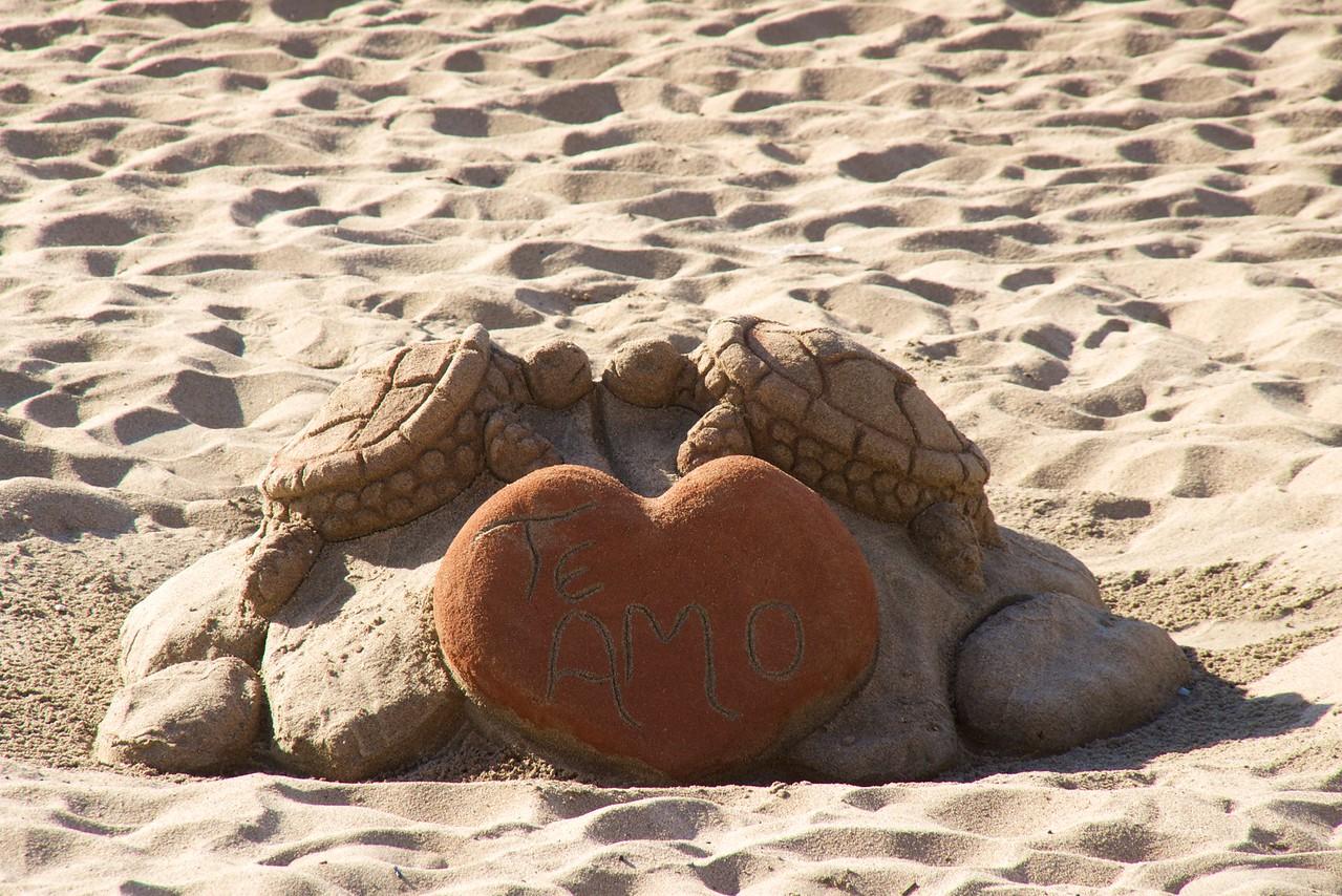 Turtles & Heart Sand Sculpture at Vina del Mar