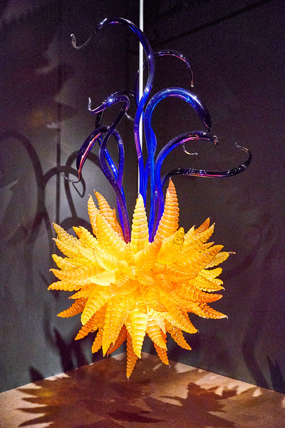 "Chihuly's ""Orange Hornet and Eelgrass Chandelier II""."