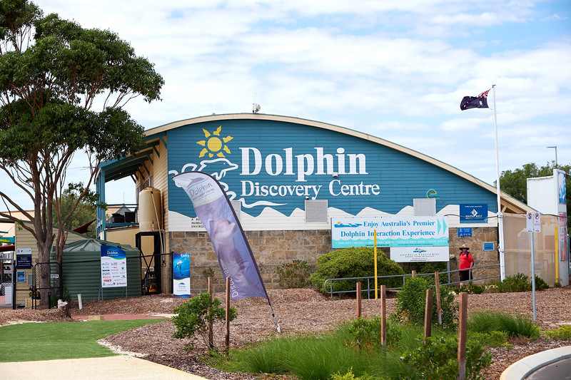 Dolphin Discovery Centre is a non profit committed to dolphin research, education, conservation and tourism.