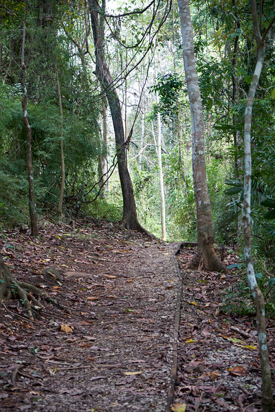 Trail in the Municipal Natural Park.