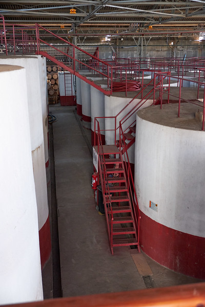 Cement vaults are the original storage vessels for the fermentation process in making pisco.