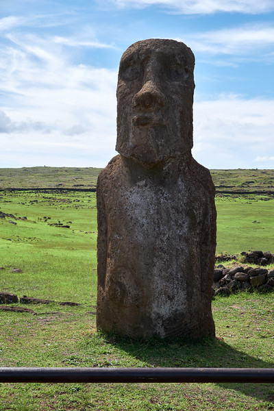 The Traveling Moai has traveled to Japan for a world fair because the Japanese helped restore the 15 statues following the 1960s tsunami.