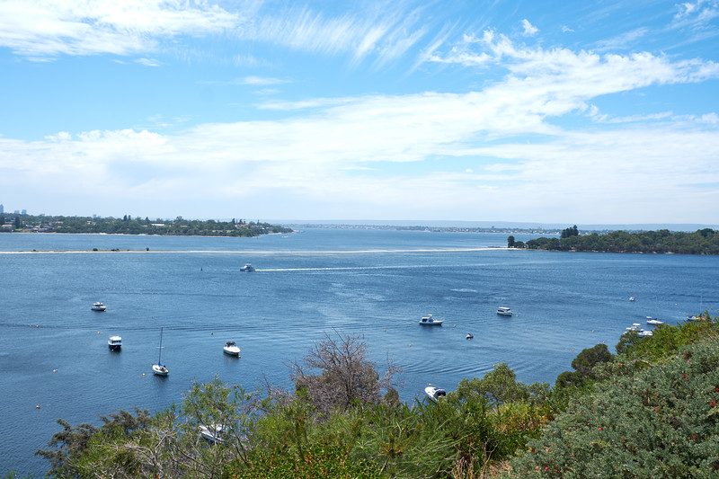 Looking at southern side of the Swan River from Botanical Garden.