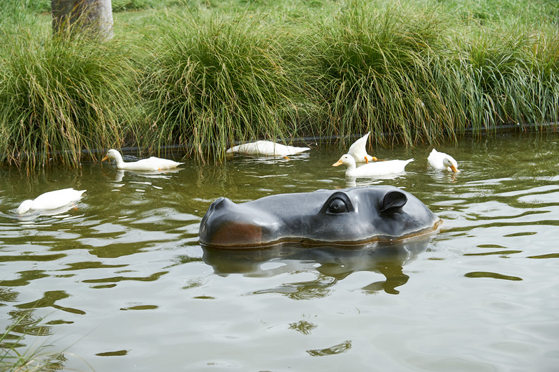 Just what everyone wants for their pond... a lifesized hippo.