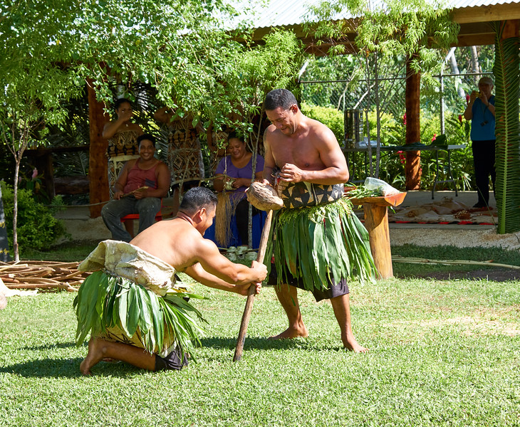 As Tongans progressed they discovered a sharpened stick would also work to husk a coconut.