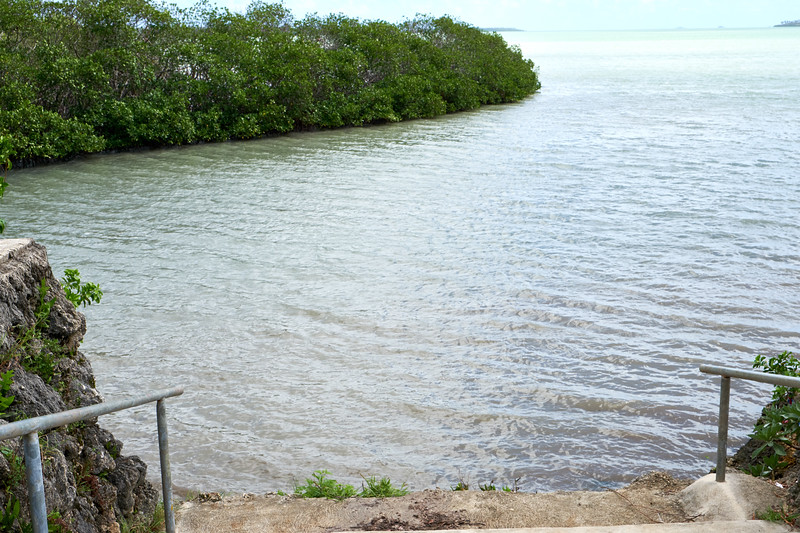 A modest cairn above a mangrove inlet near Holonga village marks the spot where Captain Cook came ashore in 1777 on his third trip to Tonga.