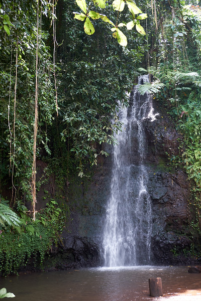 Waterfall at Vaipahi Gardens on the south coast of Tahiti.