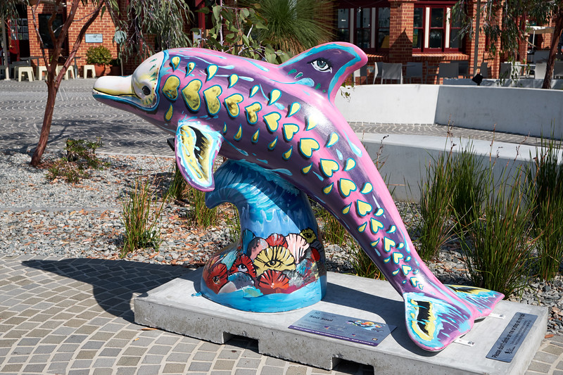 This painted dolphin is part of 36 colorful dolphins in The Big Splash Art Trail. They are painted by local artists and children from Princess Margaret Hospital to raise awareness of child and adolescent mental health.