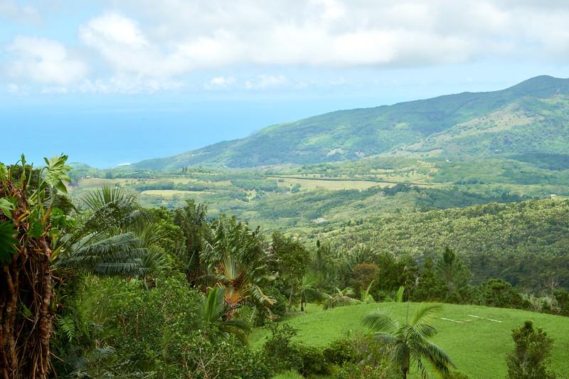 View from Varangue Sur Morne Restaurant.