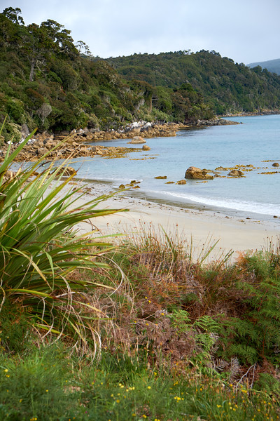 Lee Bay is the entry point to the National Rakiura Park.