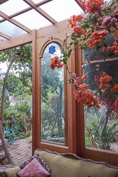 Pia's garden from her kitchen.