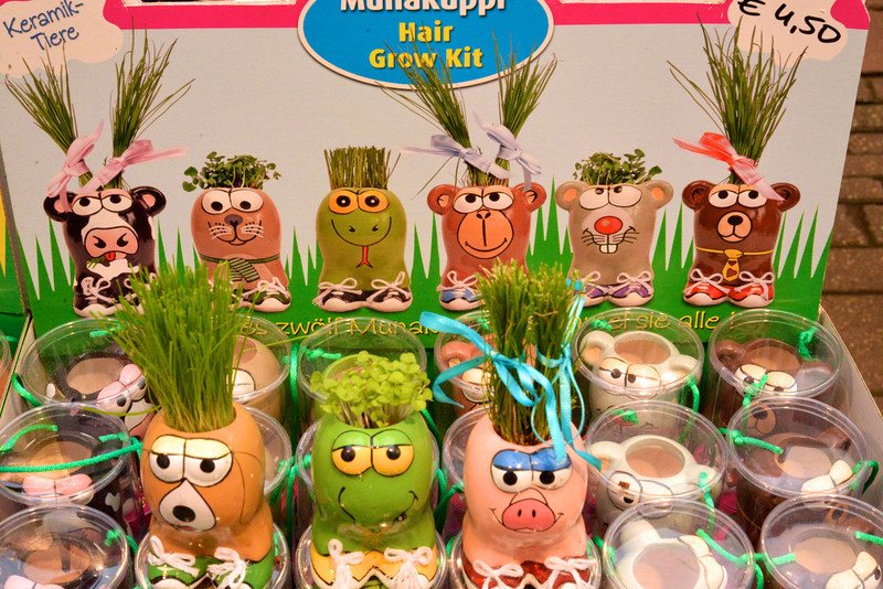 Dutch Version of Chia Pet.