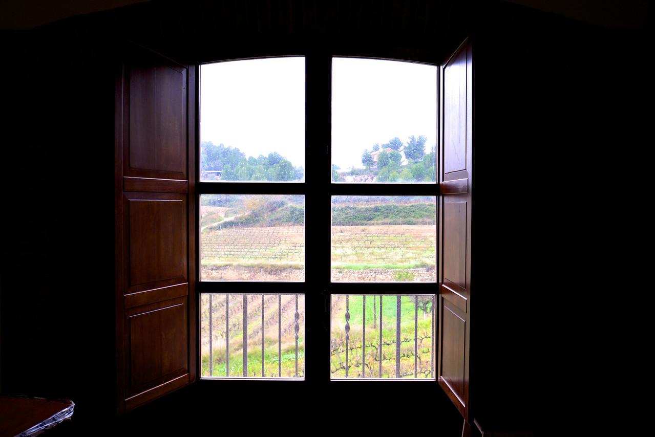 Window Overlooking Vineyards.