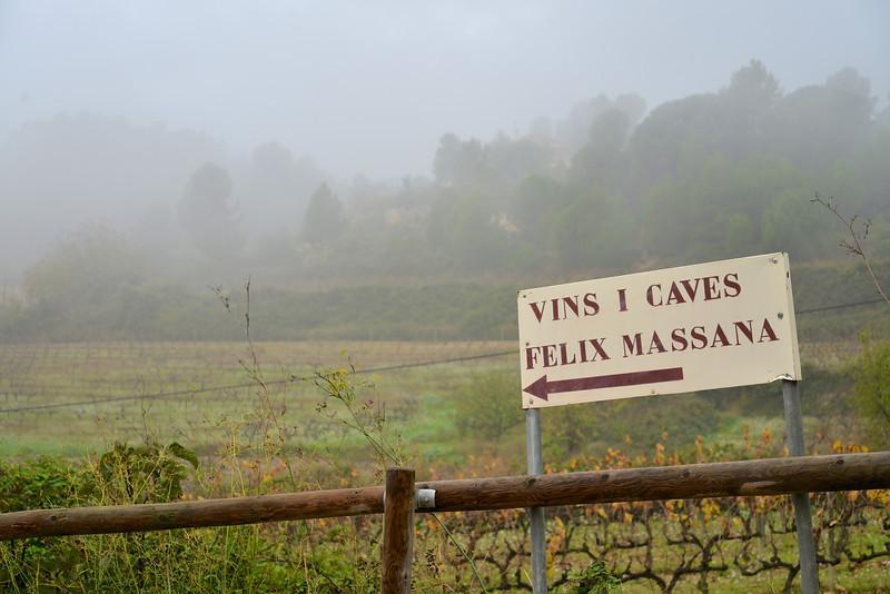 Felix Massana Known for It's Cava Wine.