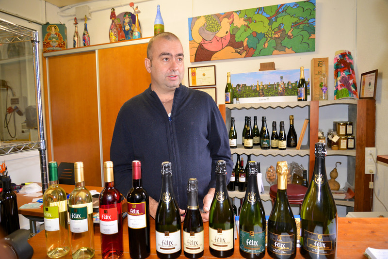 The Various Types of Wines Produced by Felix Massana Winery (Approximately 60,000 Bottles/Year).