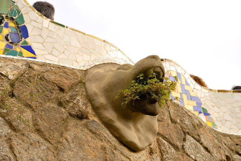 Plant Breathing Gargoyle on Outside Wall of Systolic Hall.