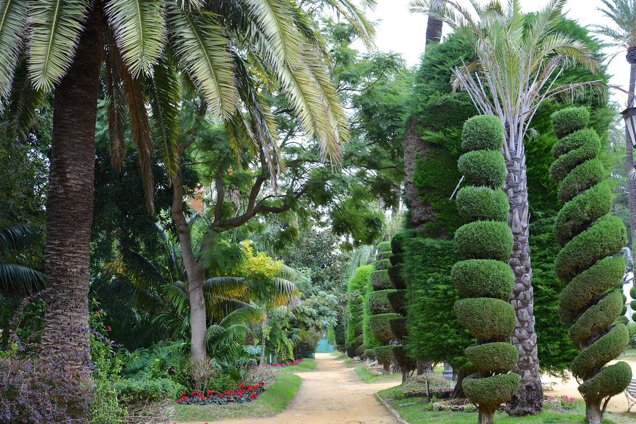 Part of Garden Walkway… Sculptured Trees.