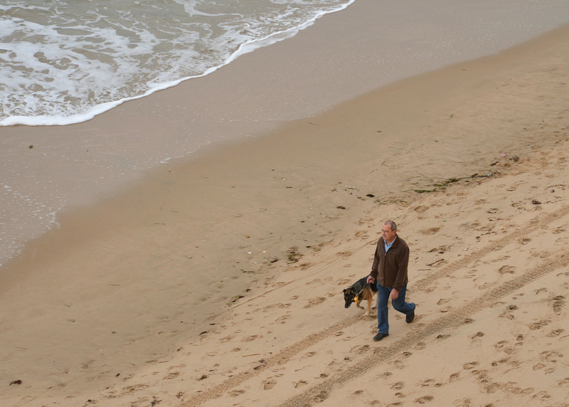 Local in New Town Walking His Dog On The Beach.