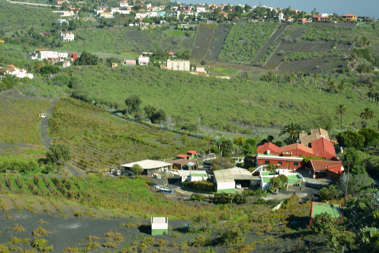 Small Vineyards in Valley Around Crater.