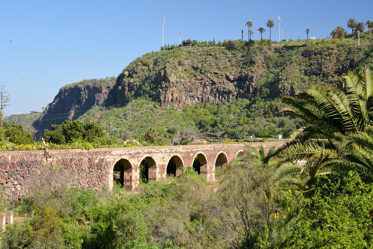 View from A Bridge in Botanical Garden.