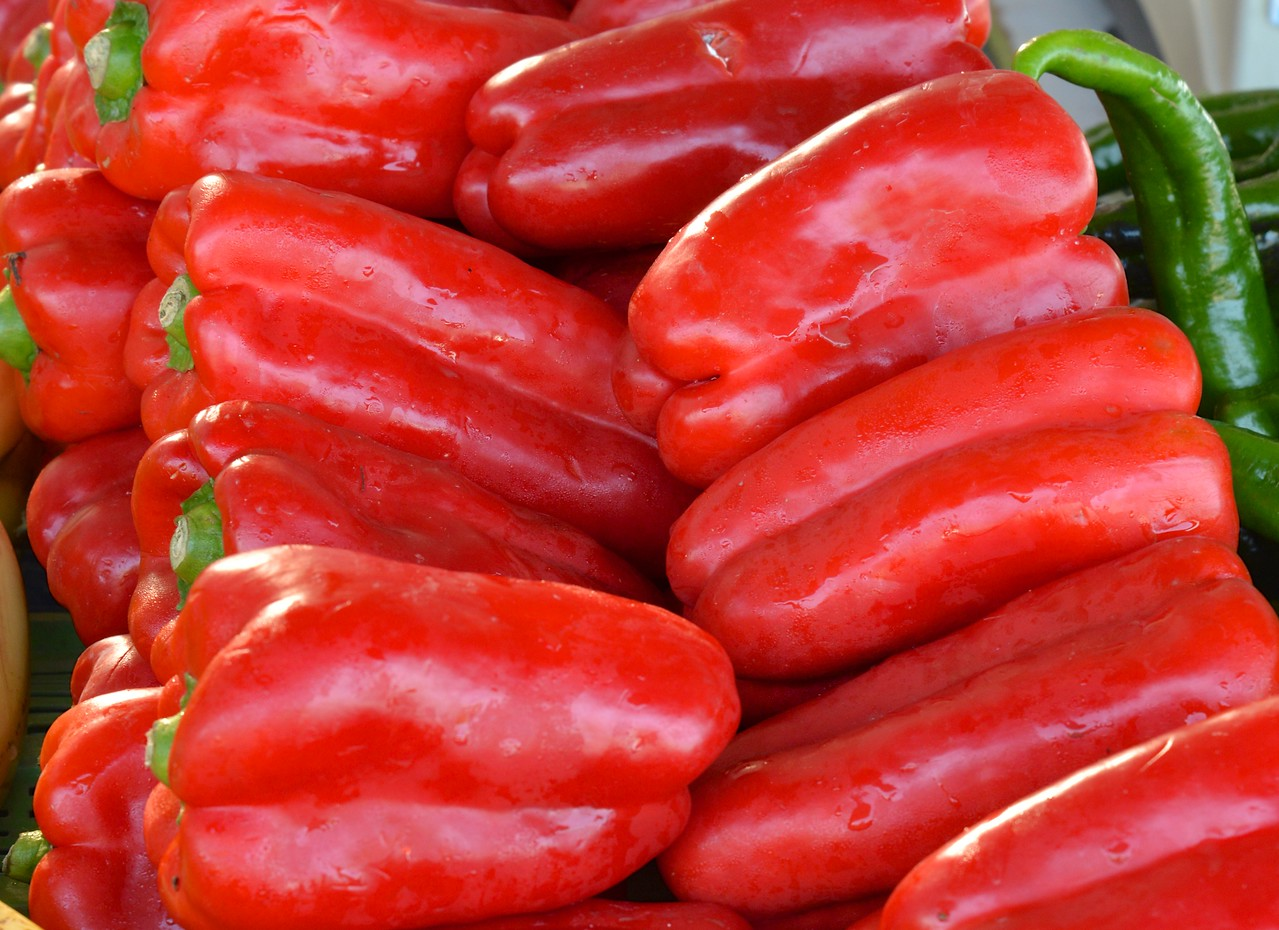 Mammoth Red Peppers.