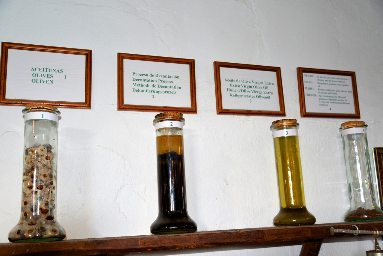 Stages of Olive Pressing.