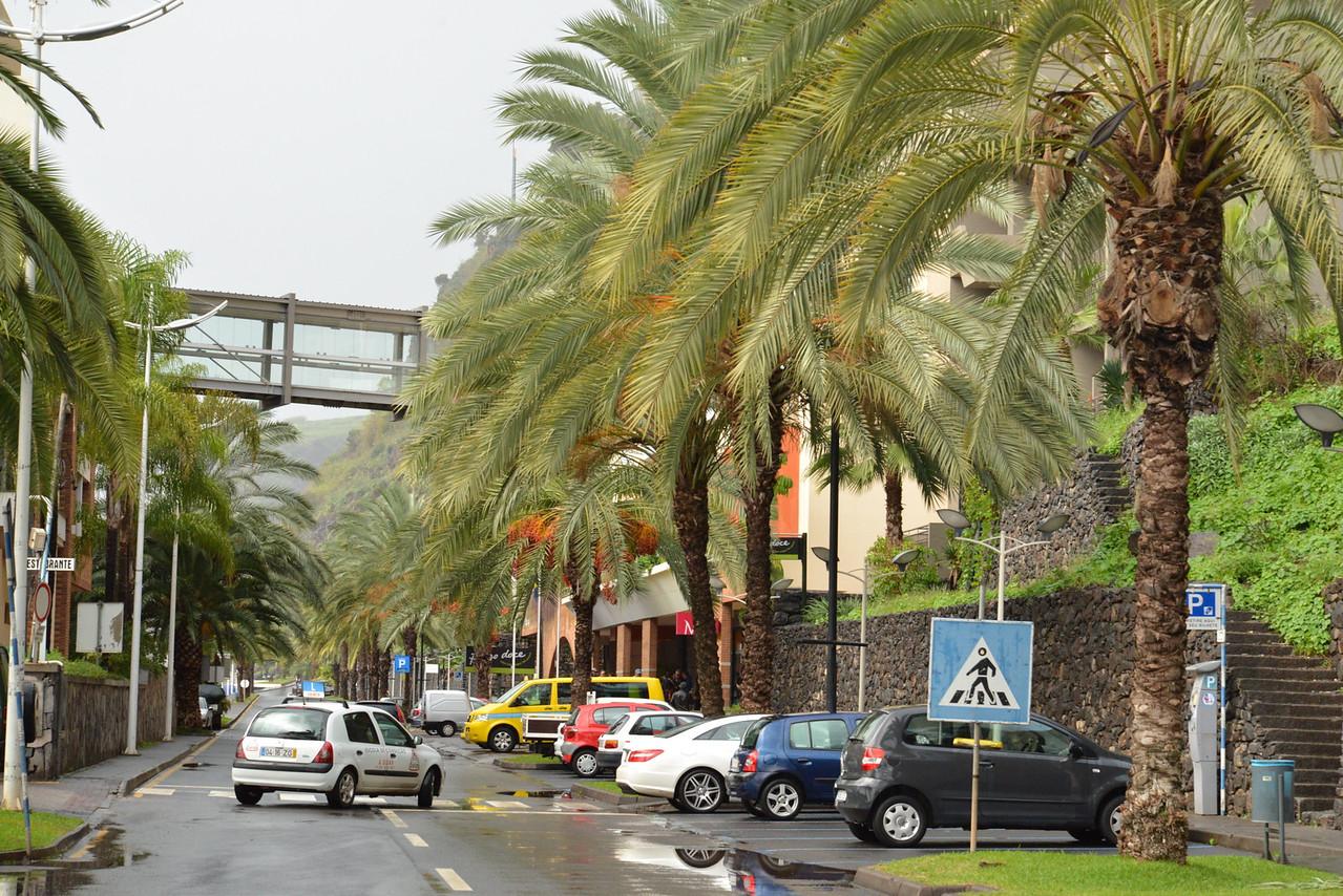 Street at Porto de Recreio da Calheta.