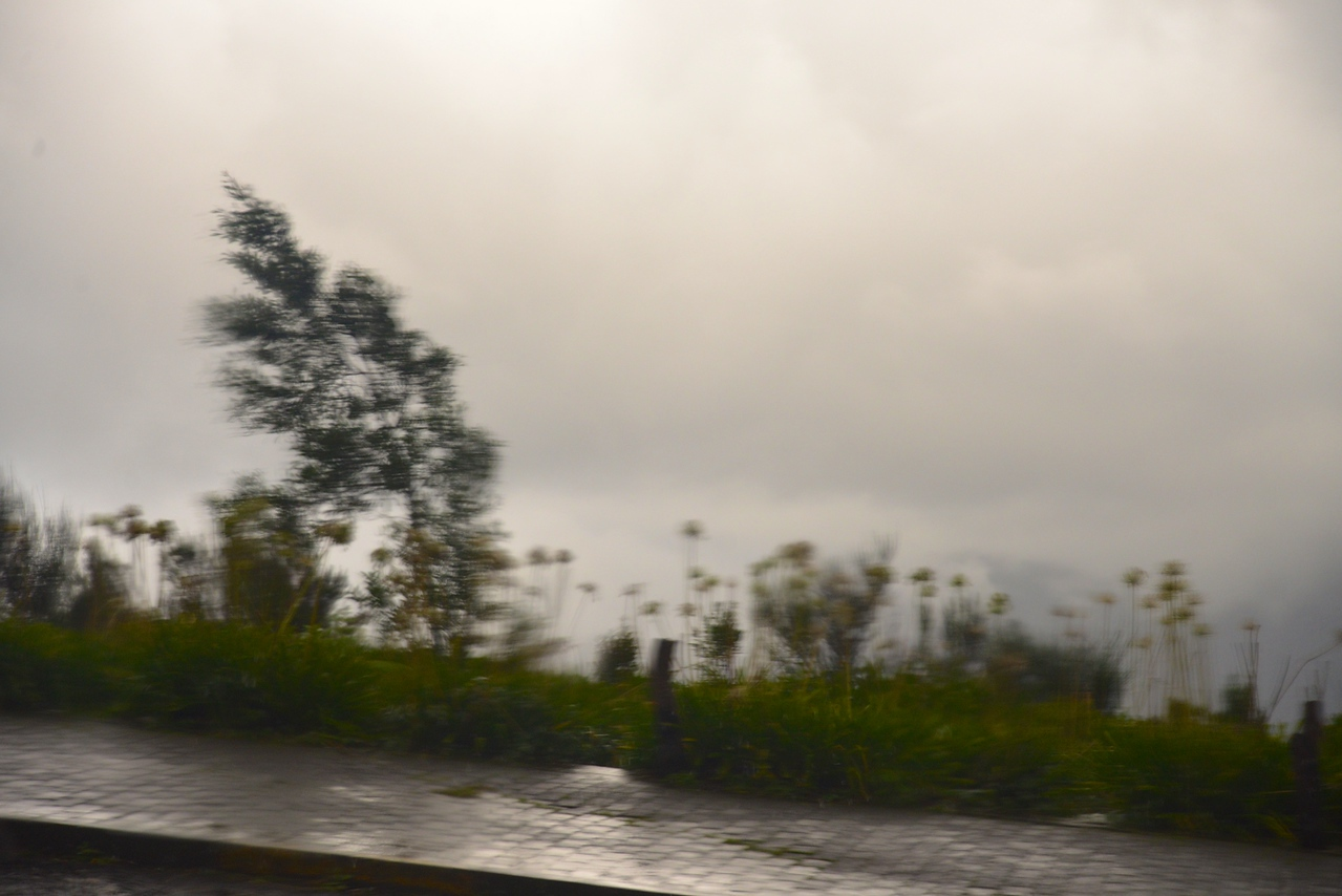 Typical Scene from Bus This Day.