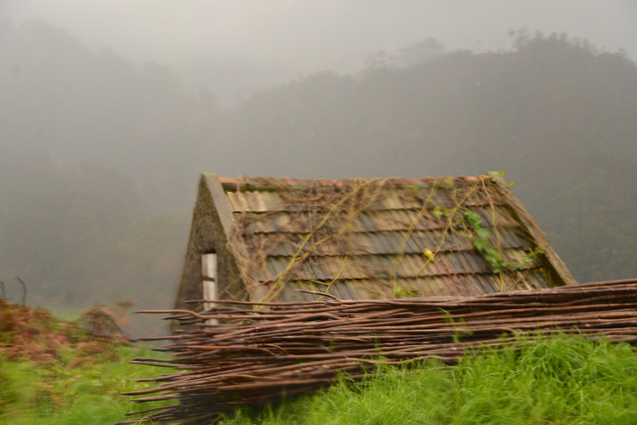 Cow Shed… Today Many Are Being Made Into Homes.