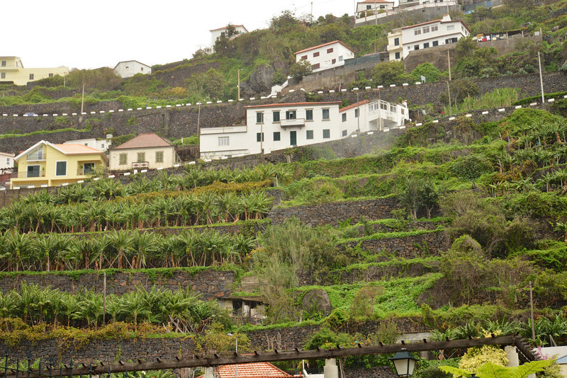 Terraced Farming… No Farm is Over 2 Arcres.
