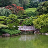 View of the bridge on the other side of the pond at the Japanese Hill-and-Pond Garden.