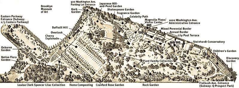"""Map of the Brooklyn Botanic Garden.<br /> <br /> (Map downloaded from:  <a href=""""http://www.bbg.org/"""">http://www.bbg.org/</a>)"""