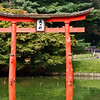 """The inscription on the torii reads """"Dai-myo-jin,"""" which means """"Great Illuminating Deity"""" or """"Spirit of Light."""""""
