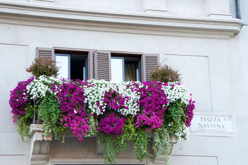 Apartment Window Overlooking Pizza Navona