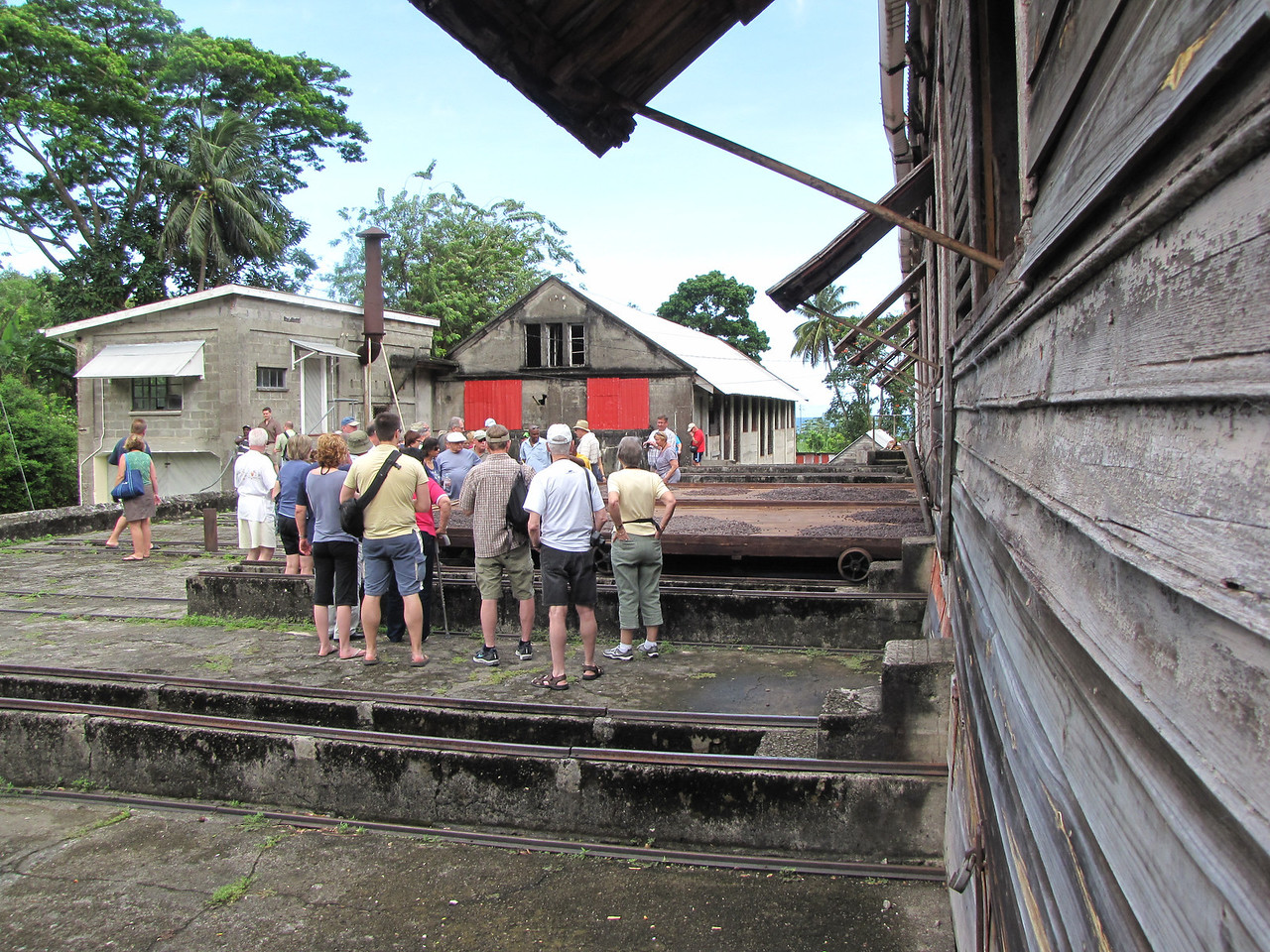 Second stop is at a cocoa processing facility on the Dougaldston Spice Estate.