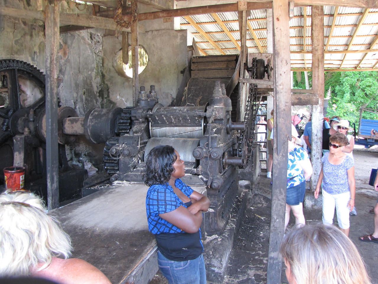 A distillery employee tells us about the sugarcane grinder behind her.