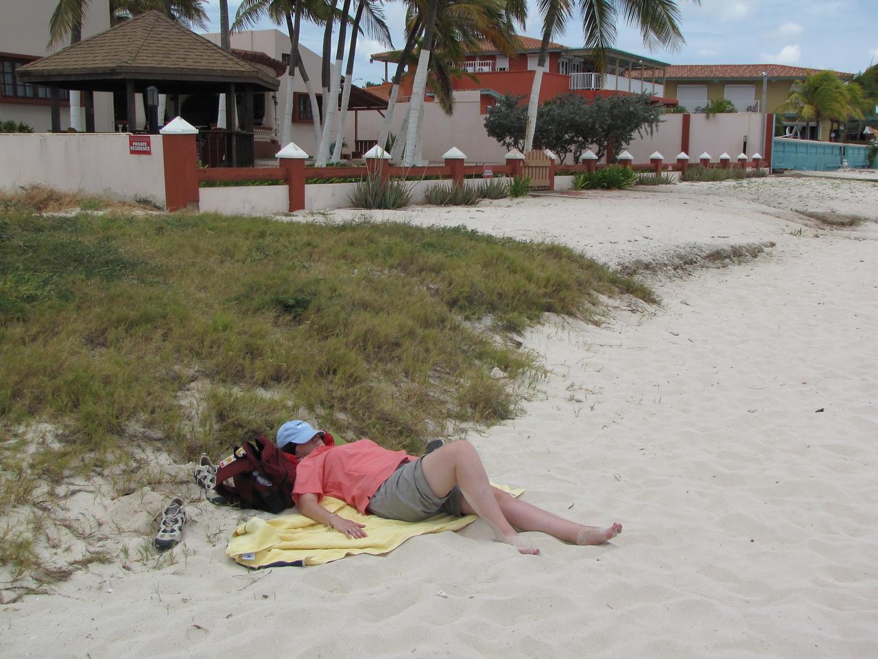 Sheila takes a quick nap.