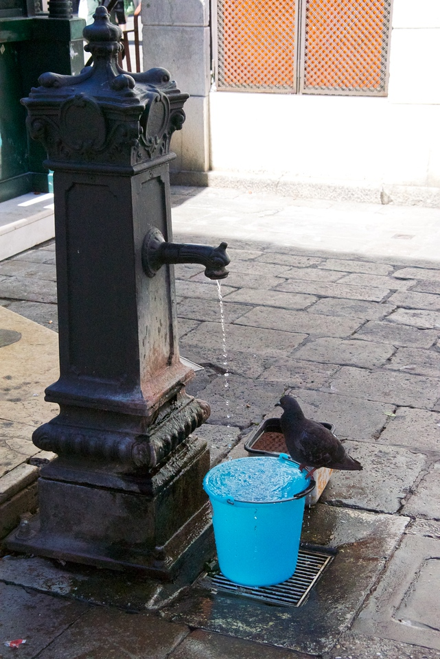 People can fill their bottles or jugs... and, the bucket is for pets or birds.