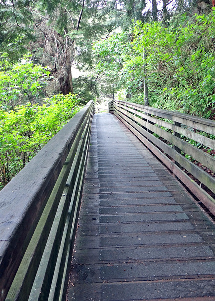 """Married Man's Trail was once just a muddy path along the creek that men would use to discreetly visit the working houses along Creek Street instead of being 'caught' walking in the front doors!<br /> <br /> Read more: <a href=""""http://www.experienceketchikan.com/creek-street-ketchikan.html#ixzz2VPUUKcnE"""">http://www.experienceketchikan.com/creek-street-ketchikan.html#ixzz2VPUUKcnE</a>"""