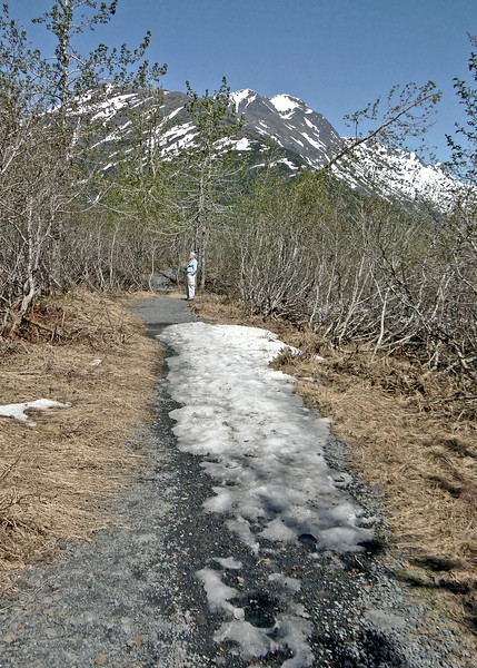 The path to Byron Glacier still had snow on it