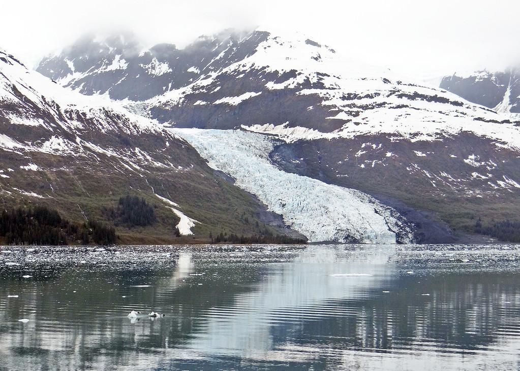 7AK6-2-13CollegeFjordGlaciers