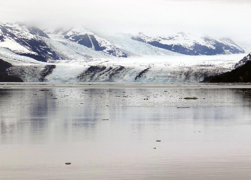 13AK6-2-13CollegeFjordGlaciers