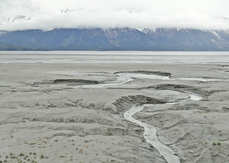 Silt in Turnagain Arm at low tide