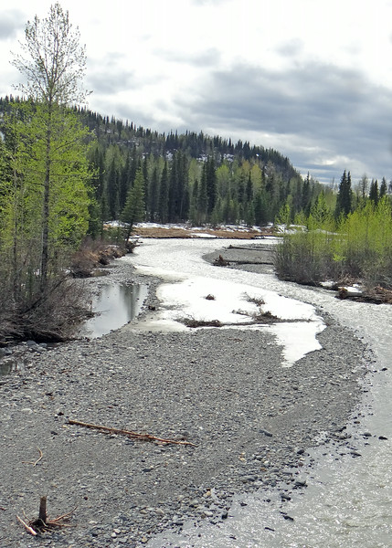 East Fork Chulitna River